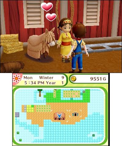 3DS_HarvestMoonSkytreeVillage_03.jpg