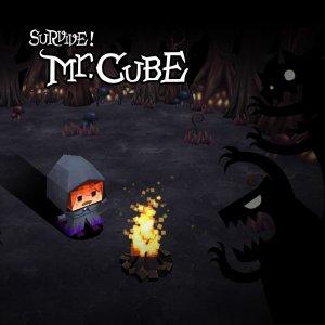 survive-mr-cube